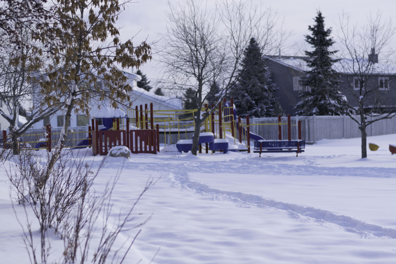Photo gallery earl buxton school for Winter gardens elementary school